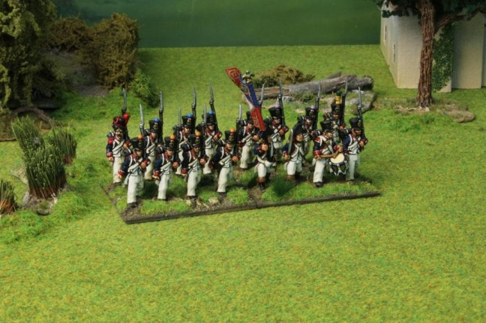 French Napoleonic Infantry Deal