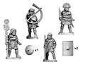 Photo of Early Imperial Roman Legionary Command (RFA032)